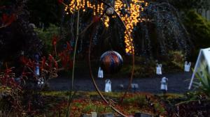 Botanical Gardens Festival of Lights