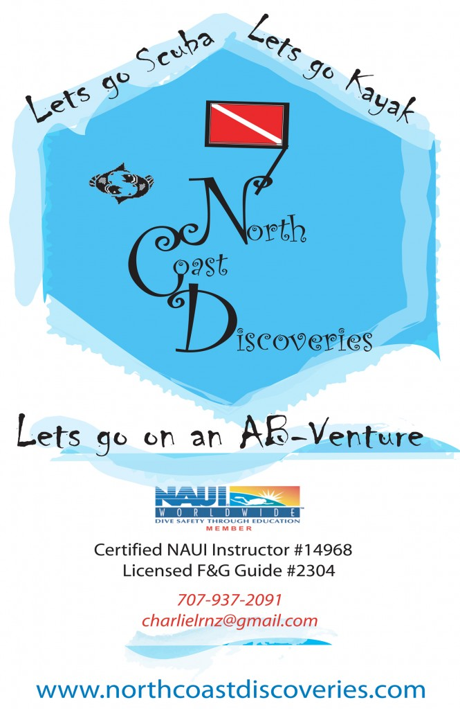 NCD Logo2