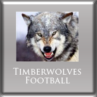 Ad Matte Timberwolves Football 200x200