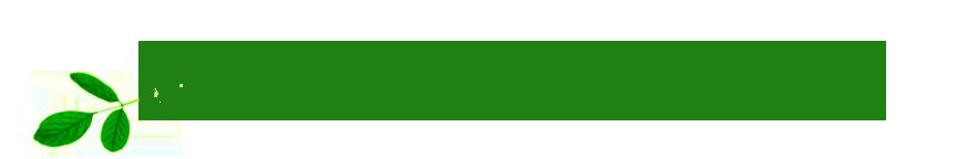 Naturally Mendocino logo transparency