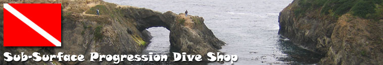 Sub-Surface-Dive-Shop-Mendo-Fort-Bragg