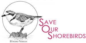 save our shorebirds logo