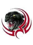 mckinleyville panther