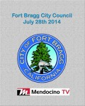 Livestream poster FB City Council July 28th small