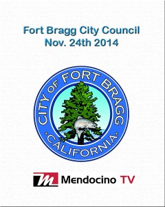 Livestream poster FB City Council Nov 24