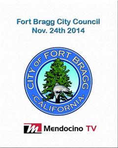 Livestream poster FB City Council Nov 24
