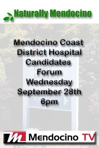 MCDH Candidates Forum