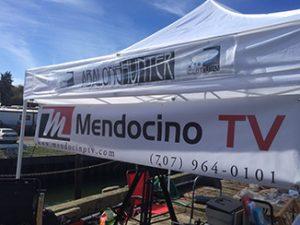 mtv-canopy